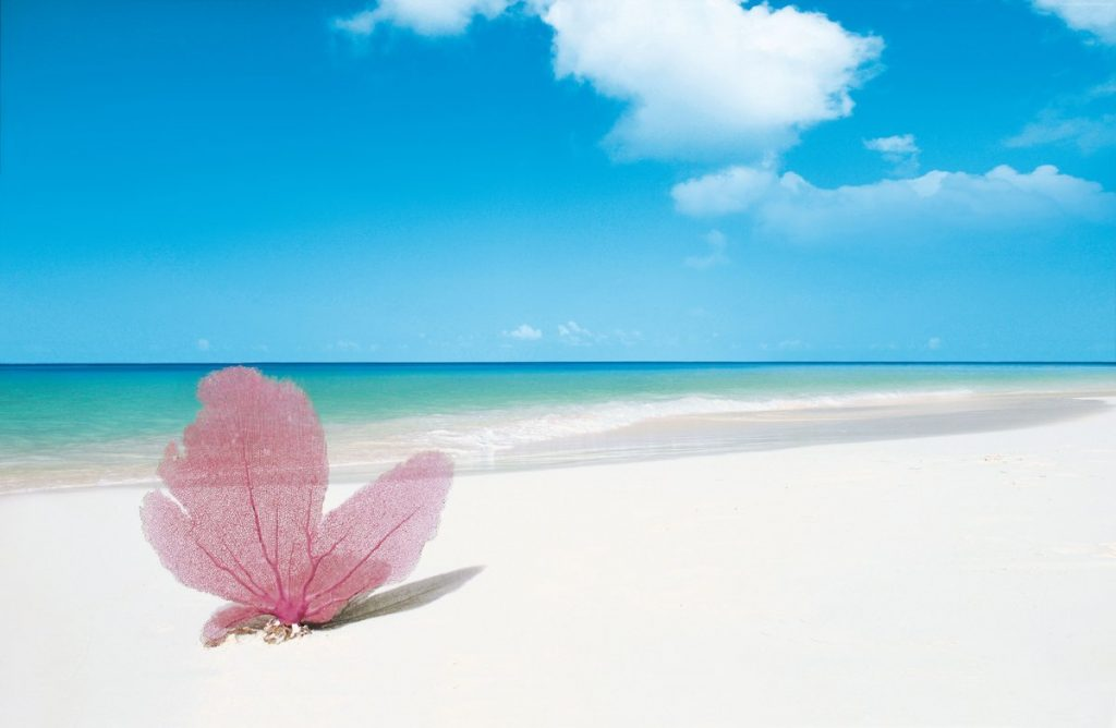 Пляж «Бухта Орлов», Доминикана